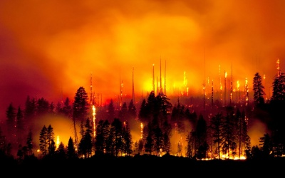 APRIL WEEK 2 WILDFIRE – ARE YOU PREPARED?
